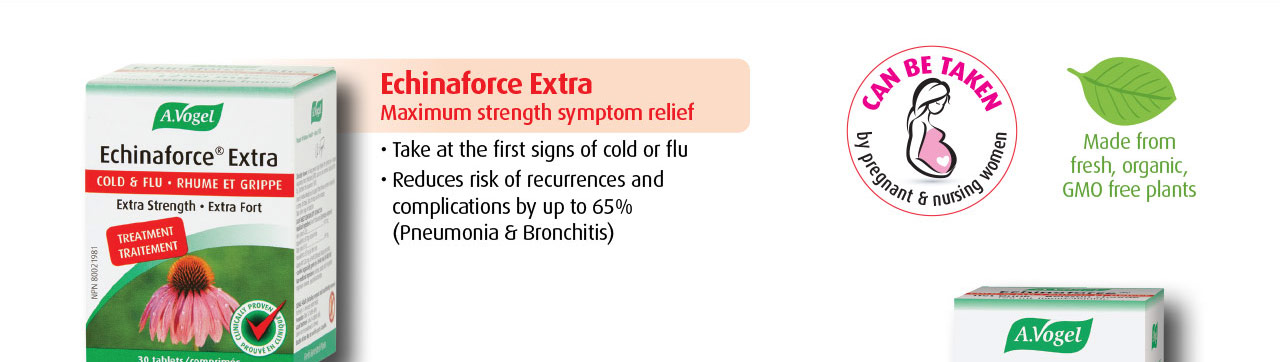 Echinaforce Extra provides maximum relief of cold and flu symptoms and reduces risk of complications by up to 65% (Pneumonia & Bronchitis).