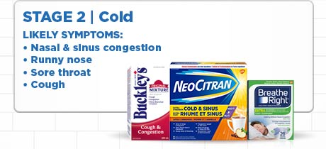 Stage 2. Cold. Likely symptoms: Nasal & sinus congestion, runny nose, sore throat, cough.