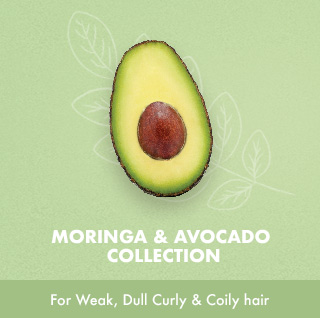 MORINGA & AVOCADO COLLECTION For Weak, Dull Curly & Coily hair
