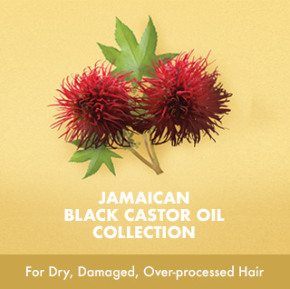 JAMAICAN BLACK CASTOR OIL COLLECTION For Dry, Damaged, Over-processed Hair