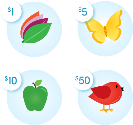 Leaves = $1, Butterfly = $5, Apple = $10, Bird = $50